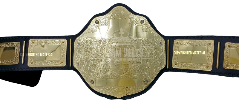 Just A Gold Championship Belt