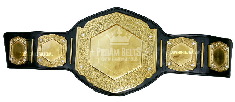 Vicious DC HEAVY Gold Championship Belt