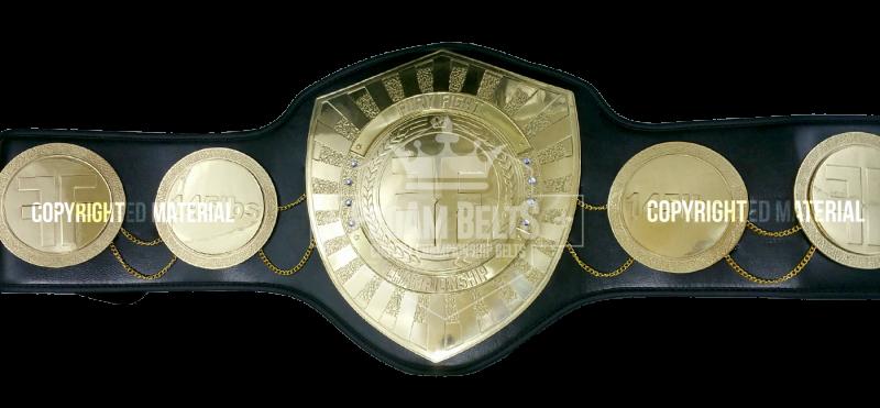 Fury Fight Championship